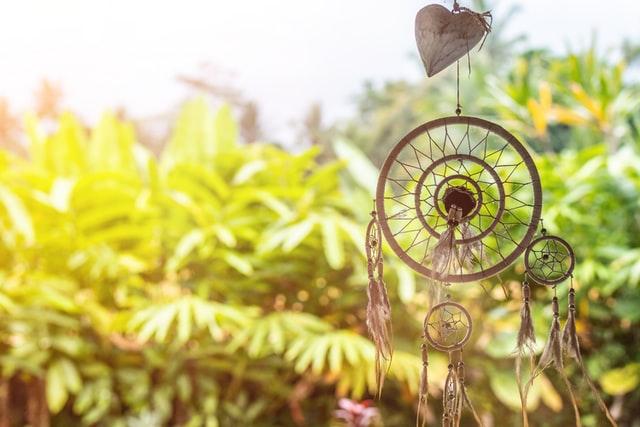 Zauberpflanzen für den Garten der Lust